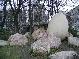 Необычные памятники Харькова