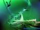 Подводный мир. Первые шаги.