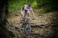 Как научиться правильно рулить на велосипеде
