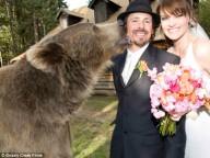 Удивительная история дружбы человека и медведя!