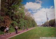 ТелеИнтервью: золотые велодорожки