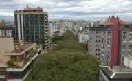 Зеленая улица Руа-Гонсалу-де-Карвальо