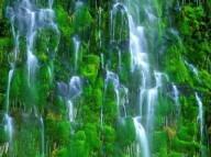 Водопад Мосбрай в Калифорнии