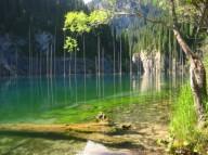 Затопленный лес озера Каинды, Казахстан