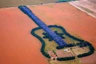 Лес в форме гитары в Аргентине