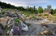 Арктическо-альпийский ботанический сад в Норвегии