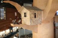 Музей леса Lusto в Финляндии