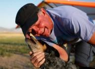 Дэн МакМанус летает со своей собакой Шэдоу