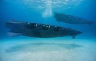 Частная субмарина для самых экстремальных водных прогулок