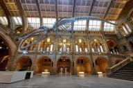 Музей Лондона посвятил выставку «фантастическим тварям»