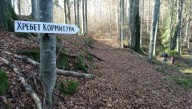 На Прикарпатье проложили новую туристическую тропу