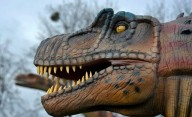 В Виннице в Подольском зоопарке открылся Парк динозавров