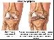 немного исследований о коленях