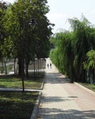 В Донецке появилась первая велодорожка