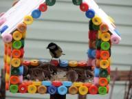 Конкурс на изготовление кормушек для птиц