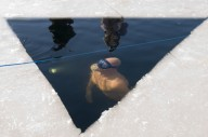 Проплыть 76 метров подо льдом