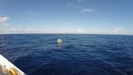 Пробег в надувном шаре по морю