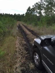 Что делать если машина увязла в грязи?