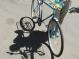 20 миллионов гривен на велодорожки выделит Киев