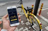 В Житомире презентовали китайскую систему велопроката