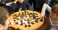 В Харькове состоится фестиваль интеллектуальных видов спорта