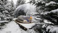 В исландском лесу появились прозрачные пузыри