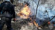 Велосипед стал причиной возникновения лесного пожара