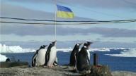 Украинцев приглашают на экспедицию в Антарктиду