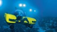 В Индийском океане устроят подводную экспедицию для туристов