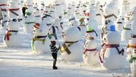 В Харбине поселились 2019 снеговиков