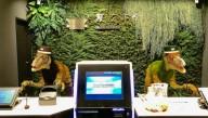 Отель в Японии уволил половину сотрудников-роботов
