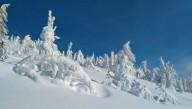 В Карпатах поселились причудливые снежные скульптуры