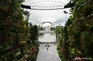 В аэропорту Сингапура построили сады и водопад