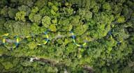 В Малайзии построили самую длинную в мире водную горку