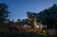 В Таиланде туристам предлагают отель со слонами