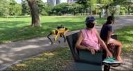 В Сингапуре роботы патрулируют парки