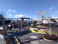 В японских парках развлечений запретили кричать