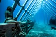 Возле Большого Барьерного рифа откроют подводный музей