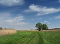 Весенние тропы Слобожанщины
