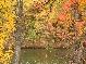 Осень в Мохначе.