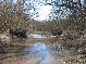 Самарский лес.