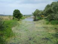 Тимченки - Мжа - Артюховка 03.07.2011