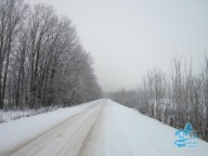 Зимняя Шаровка