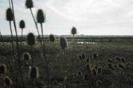Сплав по р.Дунай  15.10.2012г