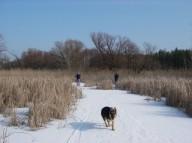 Путешествие по льду или 50км романтики беговых лыж