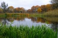 Фотоотчёт: Золотая осень на Северском Донце