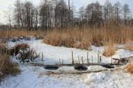Льодовий рейд по річці Стохід