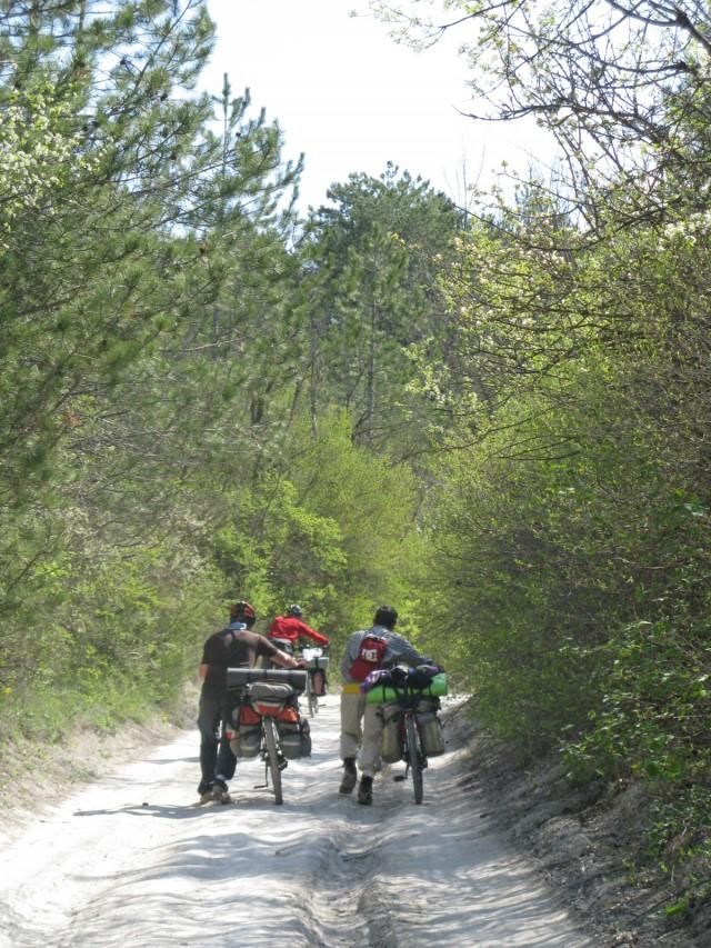 http://tourist.kharkov.ua/report/3772/imgm/000014-t.jpg