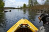 Комбинированный водо-пеший поход по реке Ворскла.