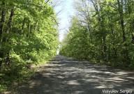 Весенняя прогулка в Шаровке и Натальевке. 7 мая 2014.